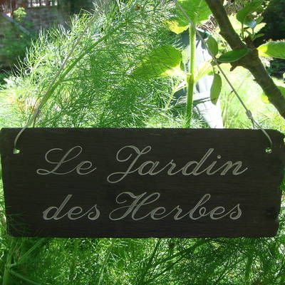 1000 images about herbes aromatiques on pinterest for Herbes decoratives pour jardin