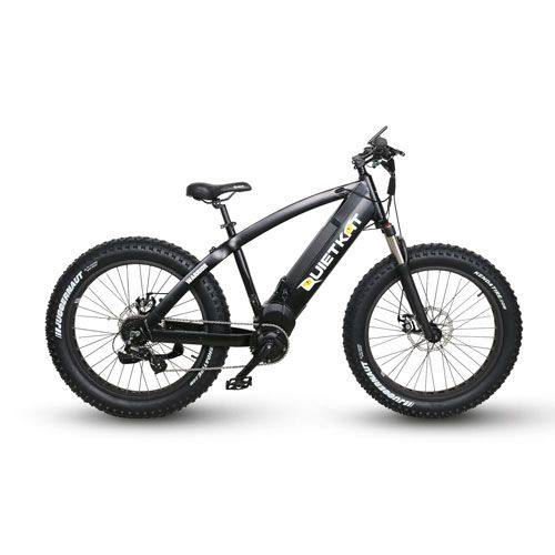Warrior Electric Mountain Bike Bike Mountain Biking