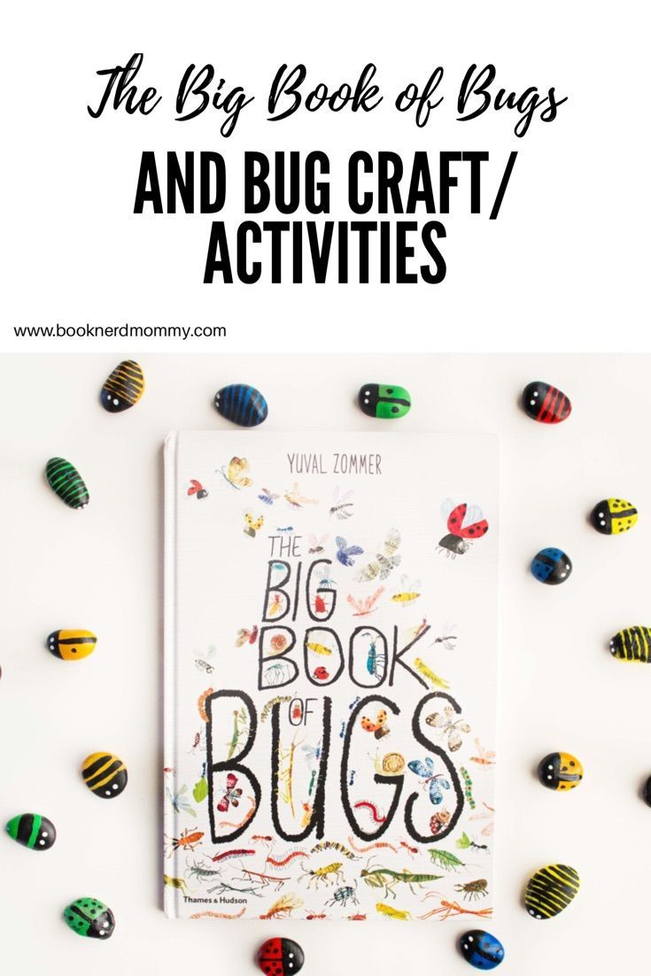 17 Best Images About Bug And Insect Crafts And Activities