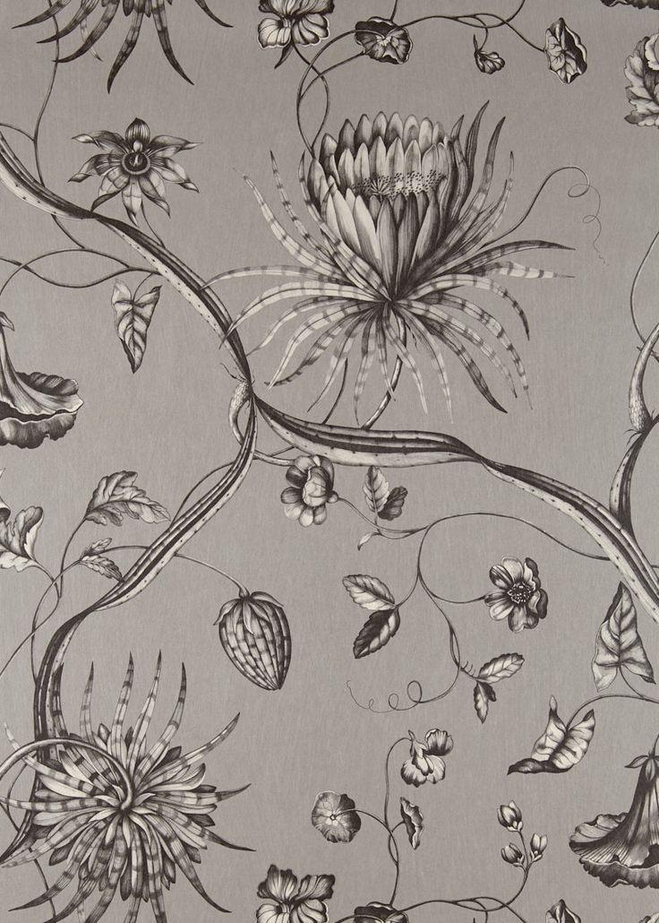 Phaedra by Zoffany Silver Wallpaper 312621 in 2020
