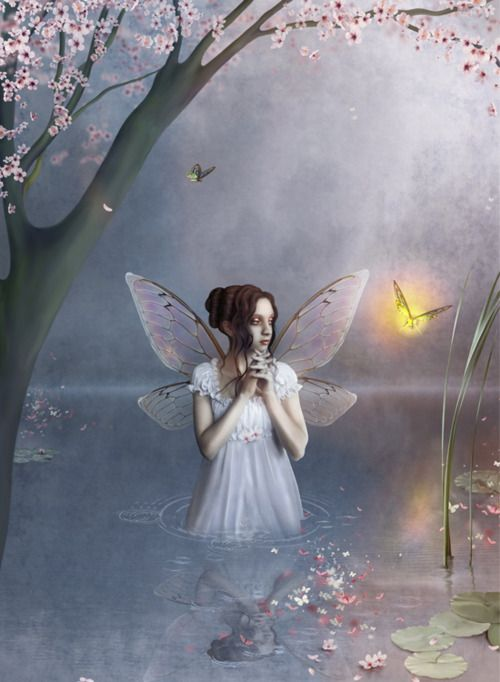 382 Best Angels Fairies Butterflies Amp Dragonflies Images