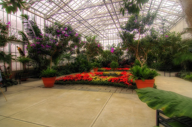 15 Best My 39 Rwp Botanical Center 39 Board Images On Pinterest Long Island Rhode Island And