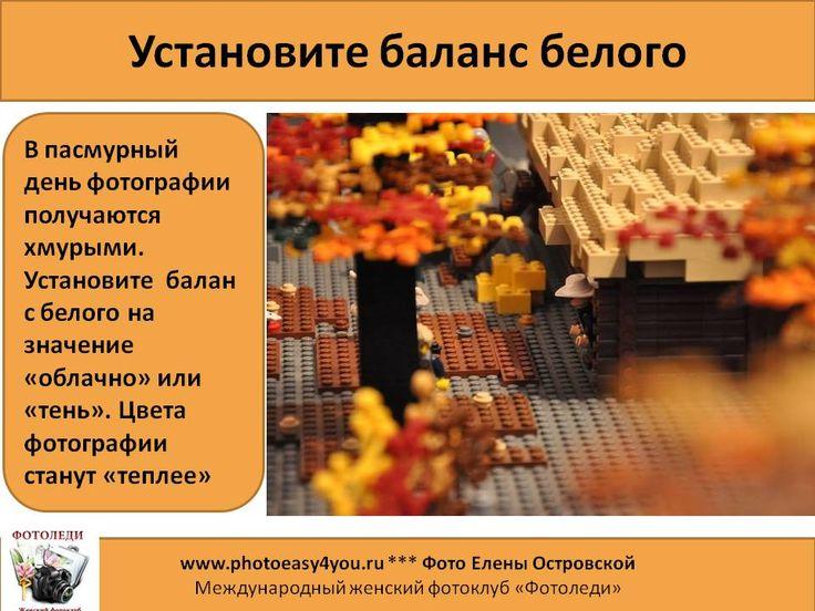 Советы по фотосъемке осени
