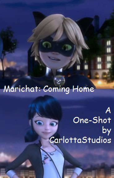 An adult Chat Noir is returning home from patrol to Marinette, his wife, his lady, his princess.