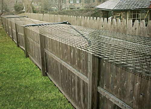 Cat Proof Backyard.  Attach to fence so cats can't leave your yard.  They can't climb up or over it.  It doesn't hurt them either.