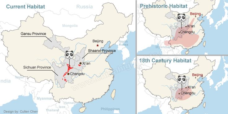 giant panda habitat map