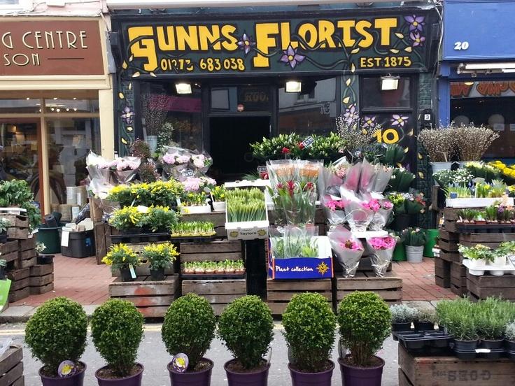 Flower In Brighton