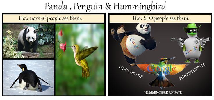 Defining #Panda, #Penguin, & #Hummingbird in #Seo. #ClaritusConsulting