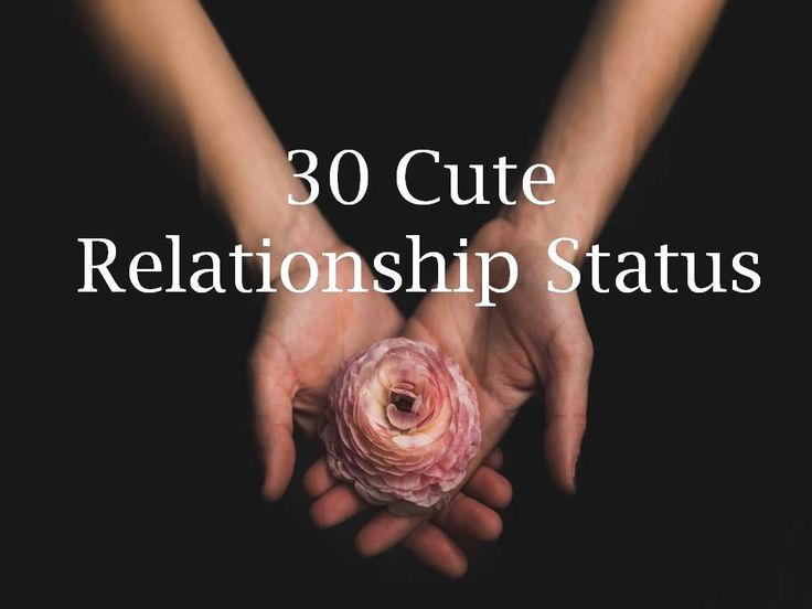 Please read and share our collection of 30 Cute Relationship Status.