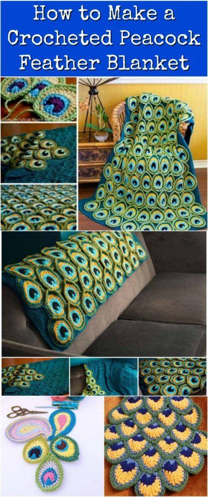 peacock blanket more