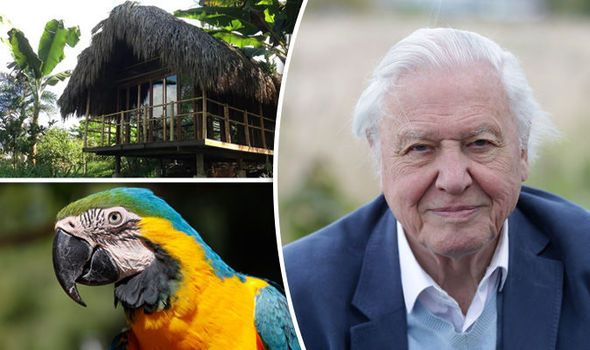Sir David Attenborough at 90: Travel around the world in the icon's footsteps