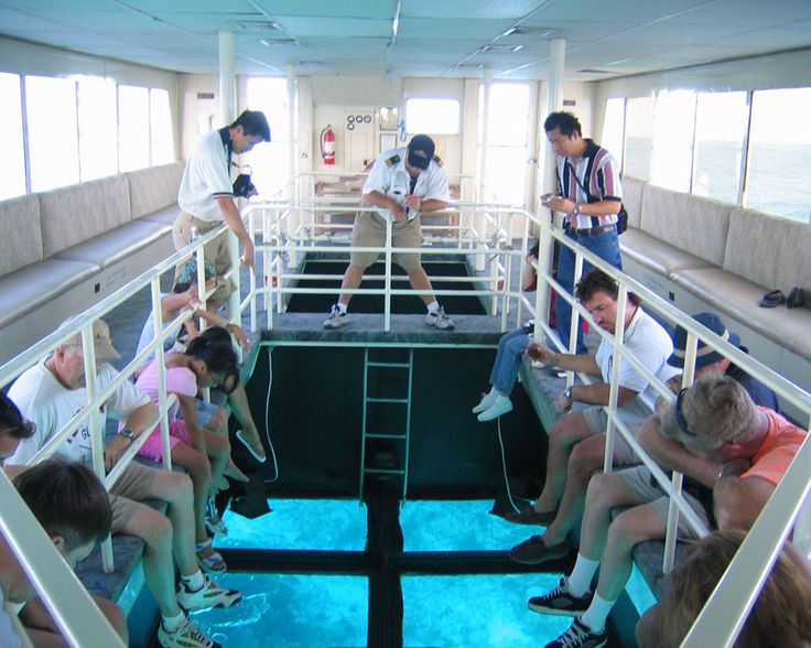 Glass-Bottom Boat - I remember this boat from a family vacation in Florida.  I was a little nervous but enjoyed it.