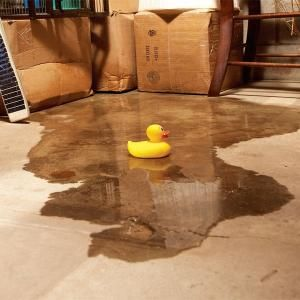 Diagnose the causes for your wet basement problem and learn what the likely solutions are—and when you should call in a pro.