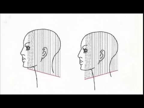 Corso Taglio Femminile | Le sei regole del taglio - The six haircut rules - YouTube