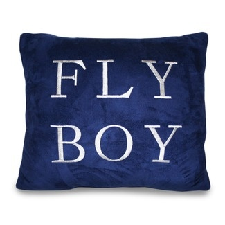 Airplane Bedding - Create a Boys Bedroom with a Flying Theme!