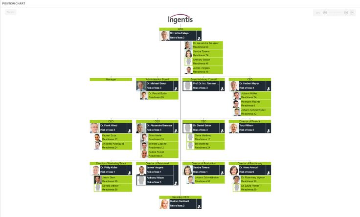 Succession Planning org chart view - visualize possible successors throughout the org structure