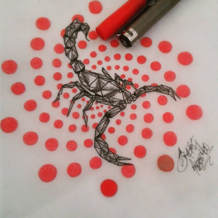 #drawordie #scorpio #sketch #draw #ink #reinterpretation #geometricdrawing #geometricink #inspiration