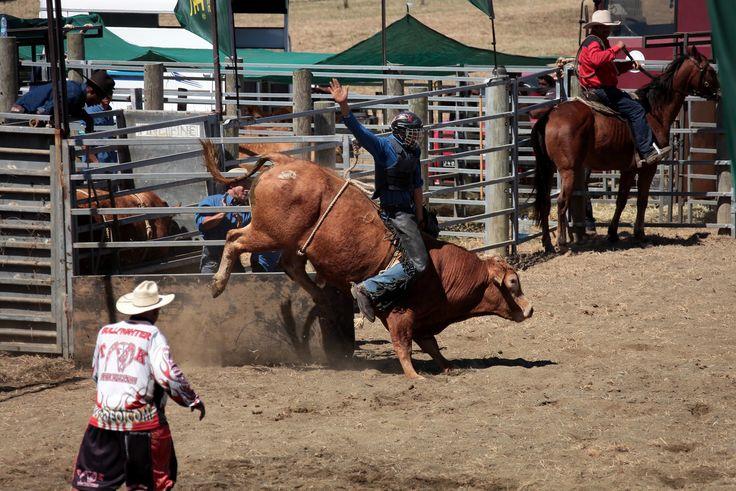 Monte de taureau Rodeo Foire de Koumac et du Nord 2016 Nouvelle-Calédonie