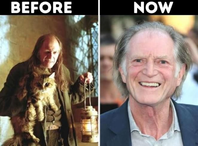 Actors From Harry Potter Now Argus Filch Played By David Bradley Today Movies Harry Potter Now Actors