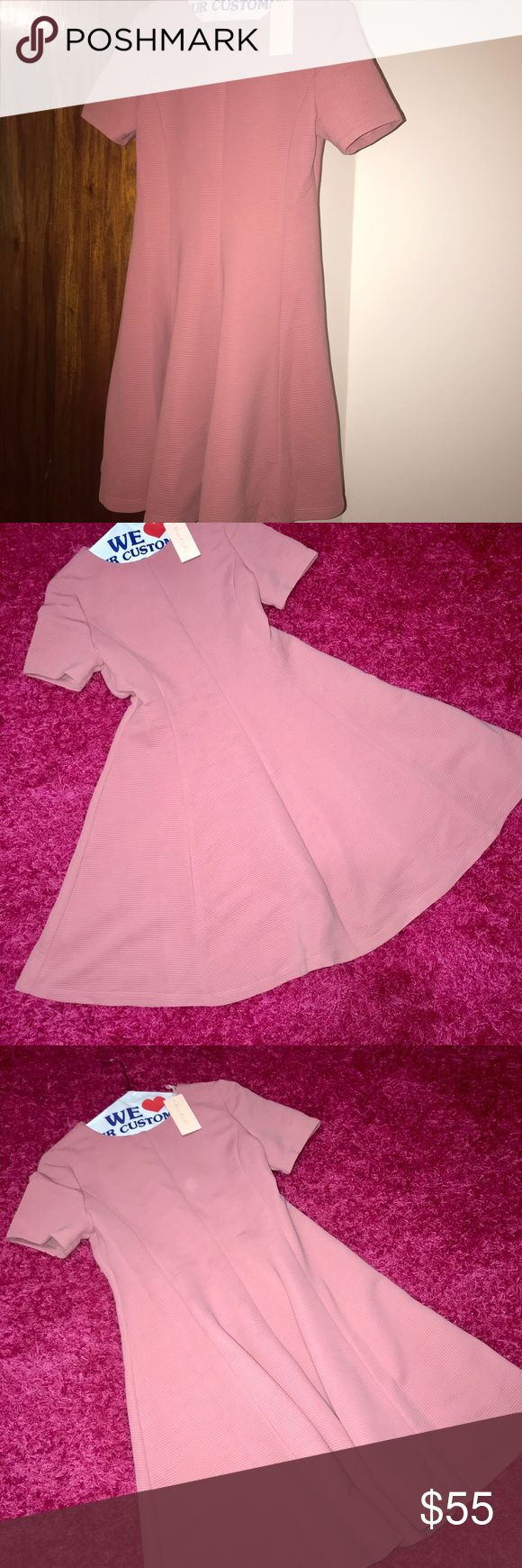 Hutch Fit flare blush pink dress Size: M petite  Condition: new, never used Hutch Dresses Midi