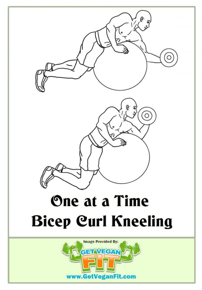 Stability Ball Kneeling Dumbbell Curl Bicep Arm Exercise Illustration