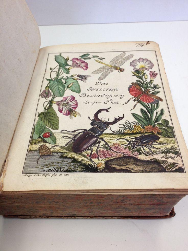 frontispiece to Vol.2 of Der Insecten Belustigung Erster Thiel (1746-1761)