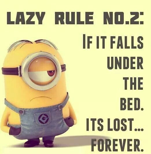 Funny Minion Quotes – 23 Pics