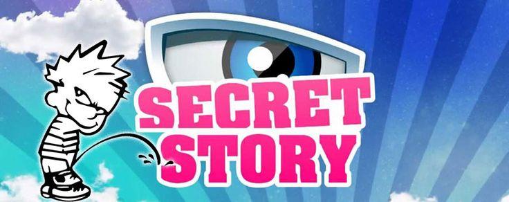 Secret Story : une émission à gerber digne de la dernière épidémie de gastro. Voici pourquoi vous ne devez sous aucun prétexte la regarder. A lire !