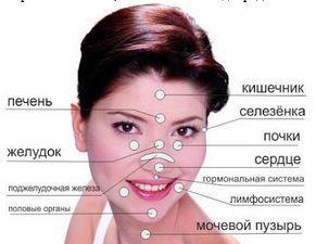♥Папа, мама, я - здоровая семья♥: Прыщи-болезни внутренних органов  Каким образом оп...