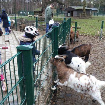 Lindenthaler Tierpark - Köln, Nordrhein-Westfalen, Deutschland