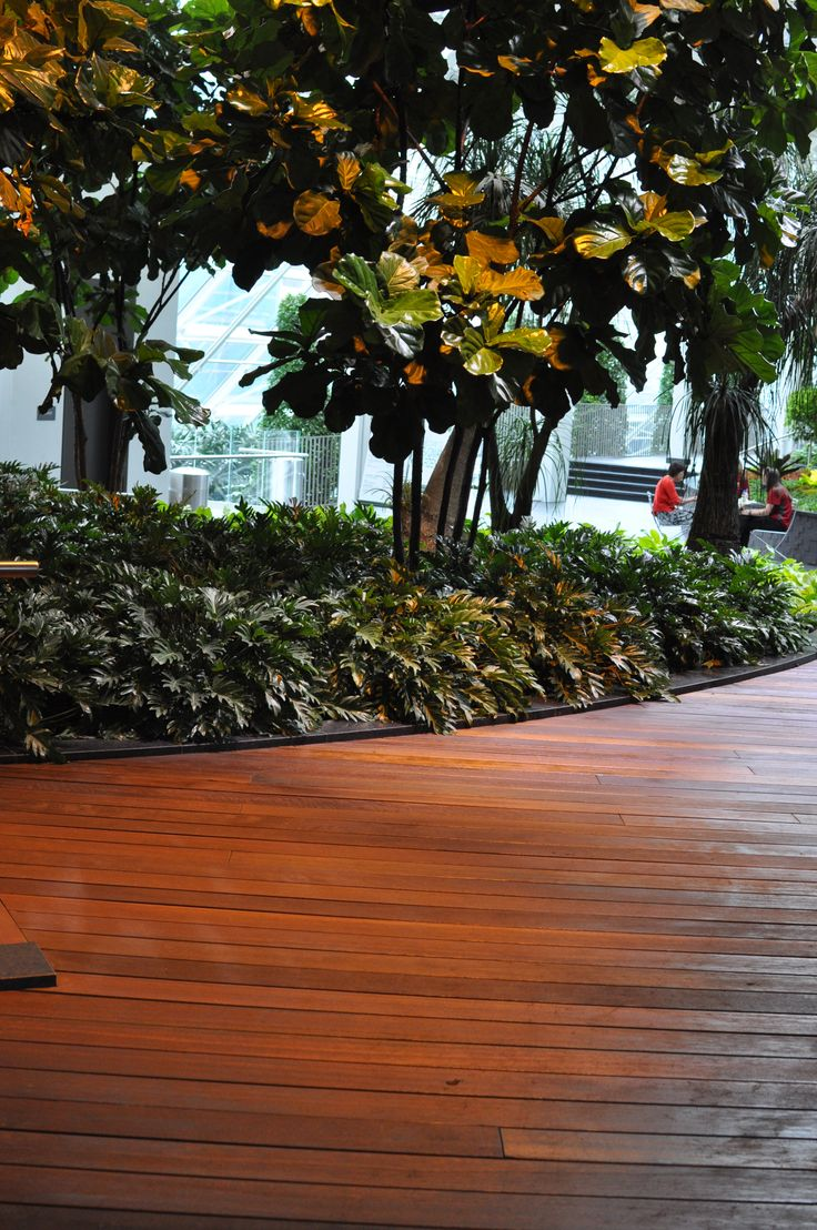 Located at 8 Avenue, and 2 Street SW, Calgary, Alberta. The New Devonian Gardens features the Red Balau Batu Exotic Hardwood, supplied by Kayu Canada Inc.