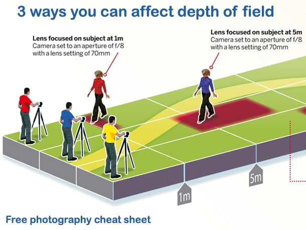 How to affect depth of field: free photography cheat sheet
