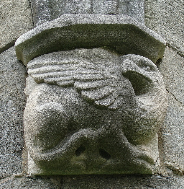 A Gryphon gargoyle, on one of the buildings at Bryn Mawr college, in Bryn Mawr, Pennsylvania. The town is near Philadelphia. The gargoyle is one of several around the exterior of one of the buildings. The object was about a half yard/meter in width, and, unlike some gargoyles in old European buildings, no more than about 3 meters off the ground.