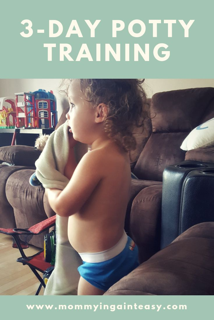 The three day potty training method | Motherhood
