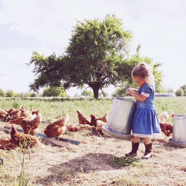 happy hens. happy kids. happy life. #freerangekids