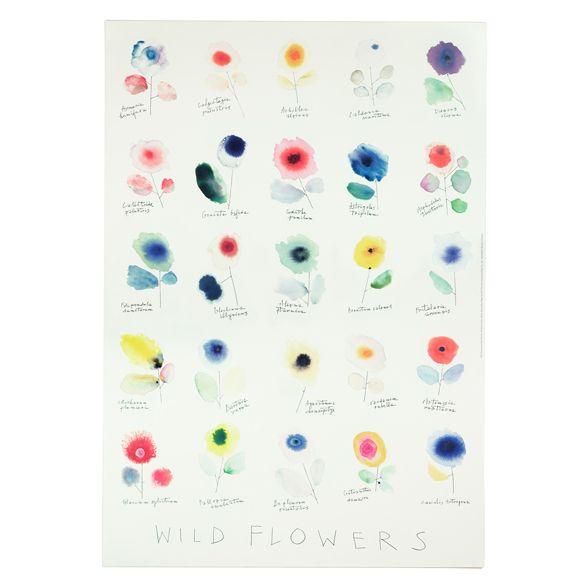Wild Flowers poster | Alan Fletcher