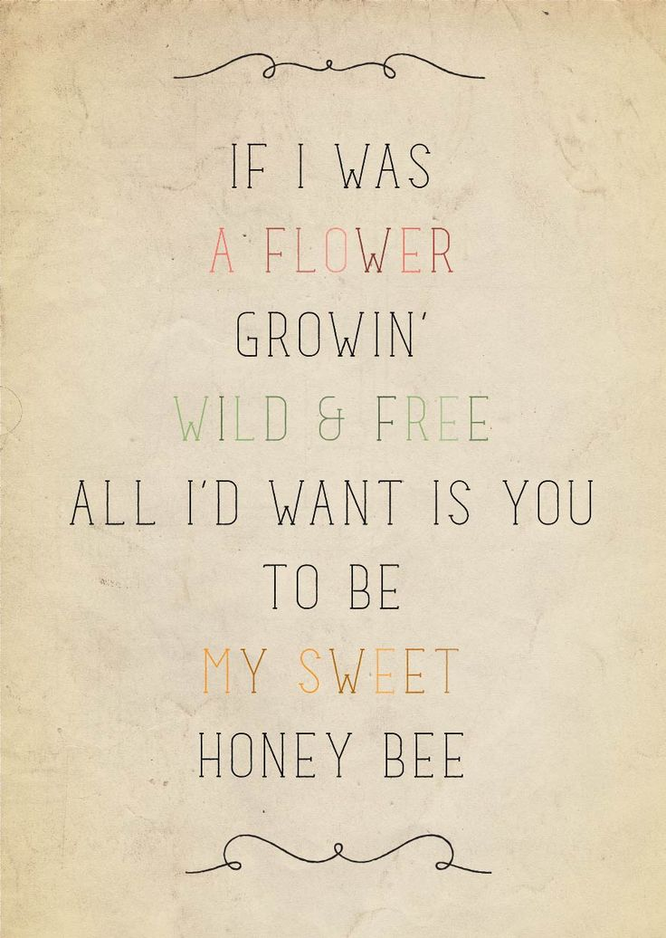 "Wild & Free... Be my honey bee. Love stings; you're stuck in my ""H"". Cheesy not? I'm as lame as (you) can be. Ohhhh"