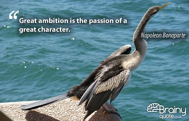Great ambition is the passion of a great character.  Napoleon Bonaparte