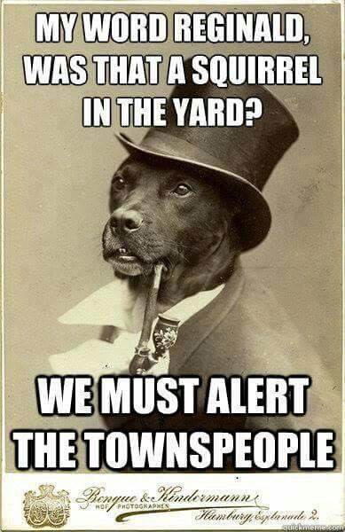 Alert !!!! Alert!!!!
