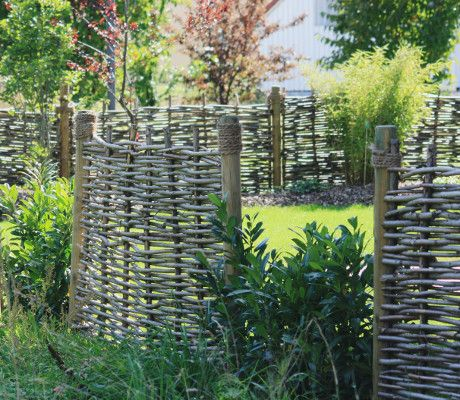9 best Fences images on Pinterest Backyard patio, Fences and Plants