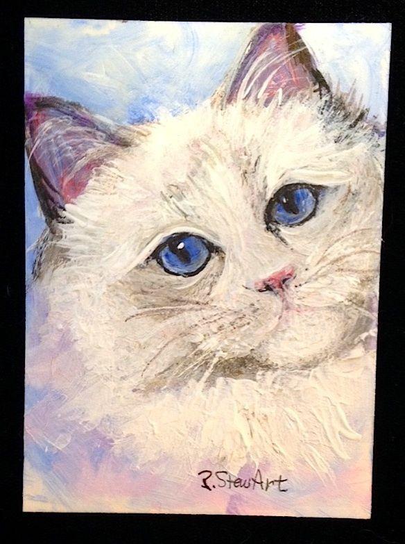 ACEO Blue Eyed Ragdoll Cat Kitten White feline Pet Portrait Penny Lee StewArt #Miniature
