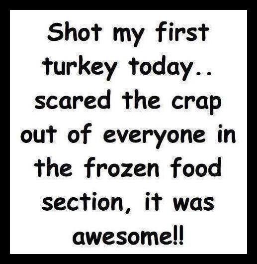 Shot my first turkey today ...