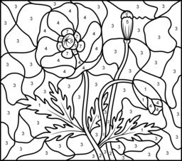 22 best Colouring pages images on Pinterest  Remembrance day
