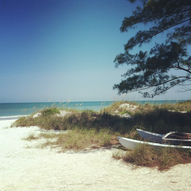 Indian Beach: Pictures, Posters, News And Videos