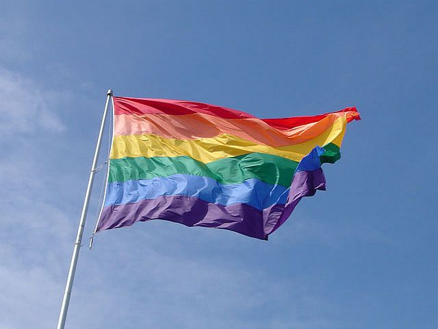 8. Crazed woman attempts to sue all homosexual people on the planet.