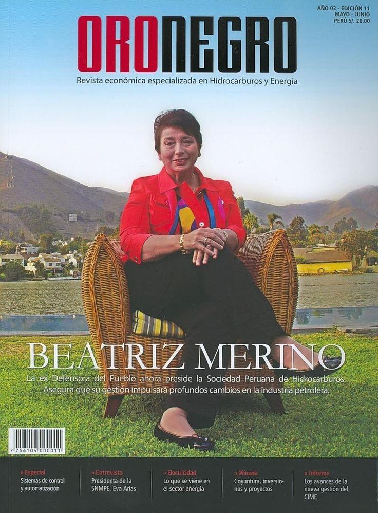 HIDROCARBUROS (Oro negro : revista económica especializada en Hidrocarburos y energía : año 2, n° 11 / 2013). Acceso al texto completo.