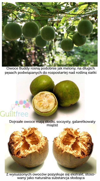 Naturalny słodzik Lo Han Guo owoc mnicha - Guilt Free