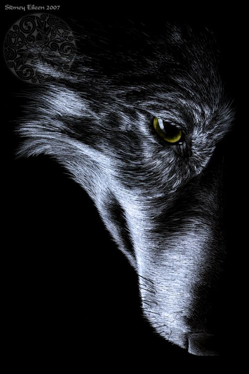 72 best Drawing on black images on Pinterest