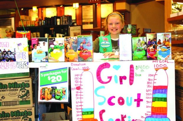 43 best images about girl scout ideas on pinterest girl