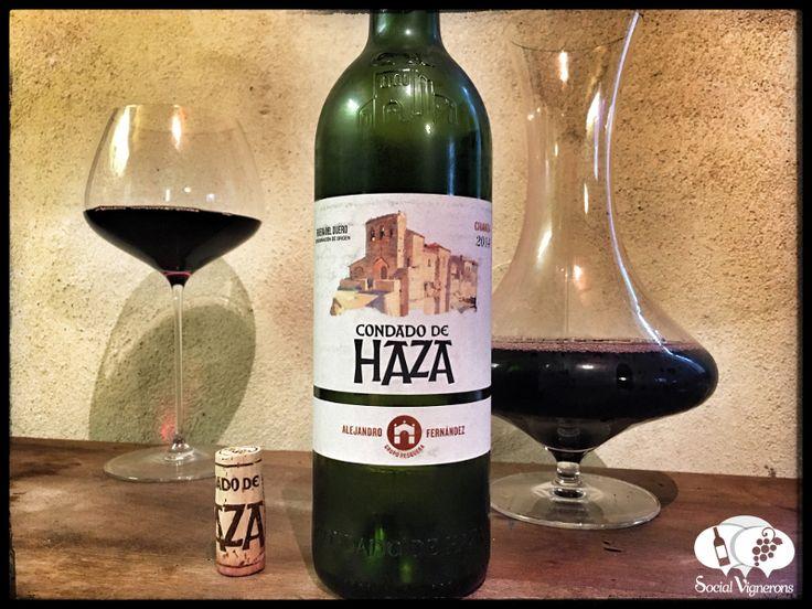 Score 90/100 Wine review, tasting notes, rating of Condado de Haza Crianza, Ribera del Duero. Description of aroma, palate profile, flavors. Join the experience.